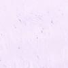 Kavat Anti Moa Purple