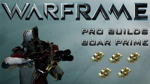 Warframe Pro Builds- Boar Prime 5 Forma Special!