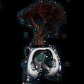 Растение Даару вики