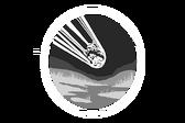Emblema de la operación Estrella infestada