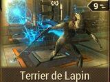 Terrier de Lapin