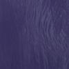 Lotus Púrpura