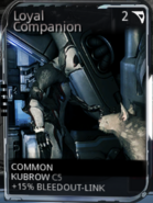 Unranked loyal companion