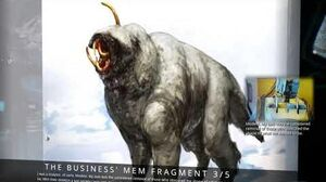 The Business' Mem Fragments (Lore)