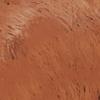 Loka marrón