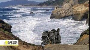 Nullifiers Destroy Rock Formation In Oregon