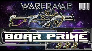 Warframe-U17-Boar Prime Builds