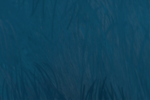 Wukong azul kavat