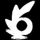 Znak Wiru
