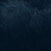 Kavat Hexis Black