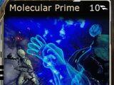 Molecular Prime