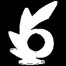 ZnakWiru