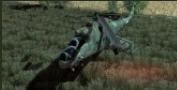 KHS Mi-24P image