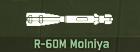 WRD Icon R-60M Molniya