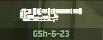 WRD Icon GSh-6-23