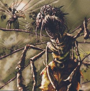 File:Battleflies.jpg