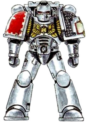Файл:Grey Knight Battle-Brother scheme2.jpg