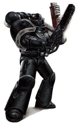 DW Black Shield