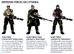 CatachanFightersCytheria