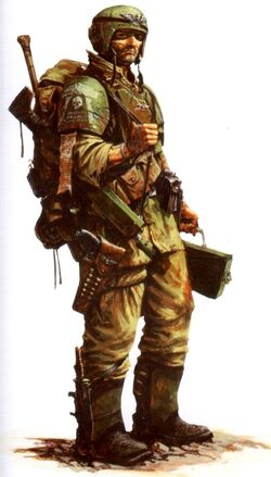Cadian Shock Trooper