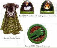 Salamanders Organization