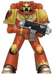 Fire Hawks Marine