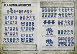 Ultramarines2ndCompanyPrimaris