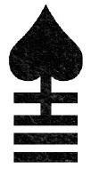 Reaper's Mirth Rune