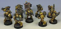 Imperial Fists Miniatures