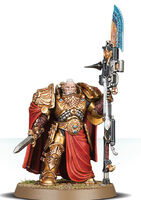 Custodian Wardens Shield-Captain