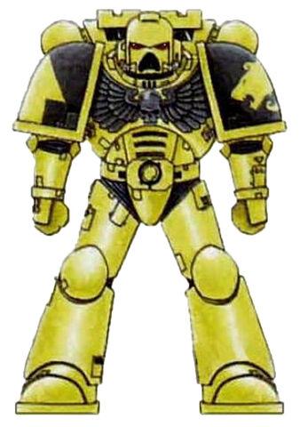 File:Lion Warriors Scheme2.jpg