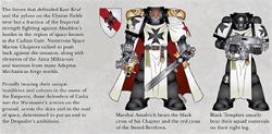 BlackTemplars13thBlackCrusade