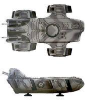 Orca31