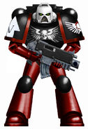 Angels of Damnation Astartes2