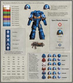 codex astartes 8th edition pdf