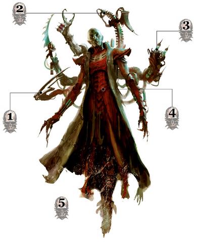 File:Haemonculus War Form.png