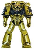 Golden Gryphons Battle-Brother