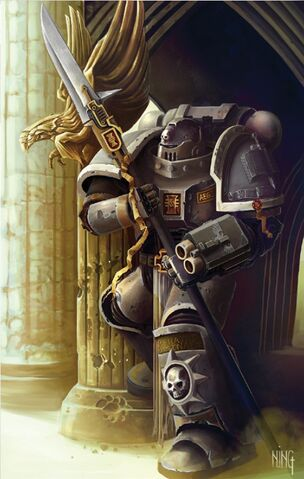 File:Grey Knight Battle-Brother with Nemesis Staff.jpg
