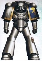 Veteran Brother Sternguard Mark IV
