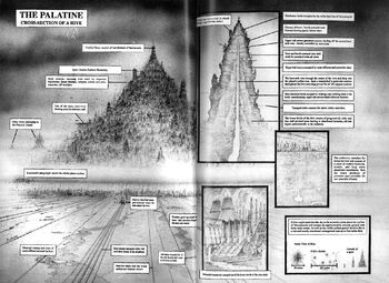 The Palatine Cross Section 1