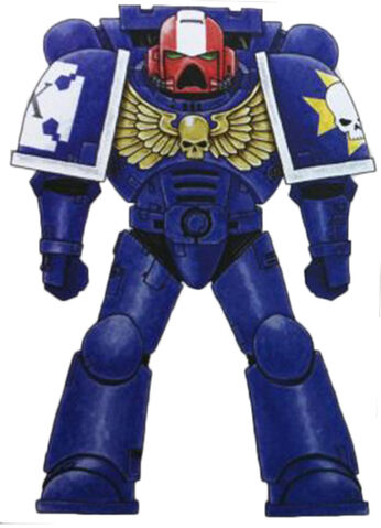 File:Imperial Paladins 1st Co Sgt.jpg