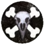 RG Reclusium Icon