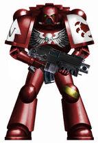 Crimson Talons Astartes 2