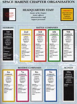 CodexOrganisation