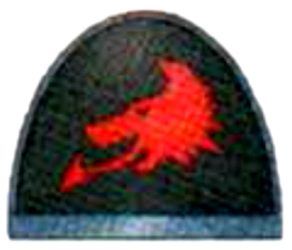 File:Skyrar's Dark Wolves shoulder pad.jpg