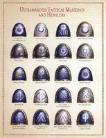 UM Tact Markings Heraldry