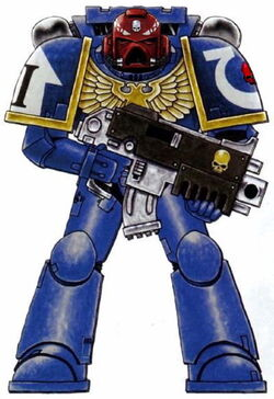 Ultramarines Vet Sgt 2