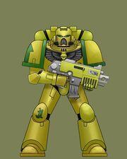 Sun Hawks Tactical Marine