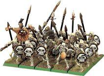 Vampire Counts Skeleton Warriors 5th Edition plastic Miniatures