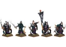 Dark Elf Corsairs Command Group 6th Edition Miniatures